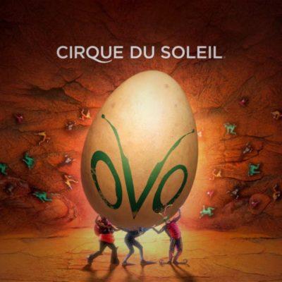 See Cirque du Soleil's OVO This Weekend!