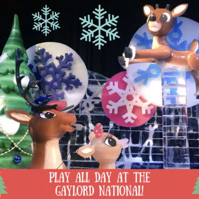 Play All Day At The Gaylord National ~ ICE!, Christmas Village, & More!