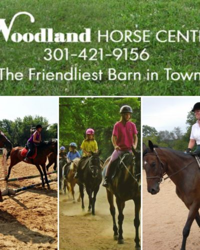 Join A Summer Camp at Woodland Horse Center!