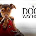 A Dog's Way Home – Advance Screening