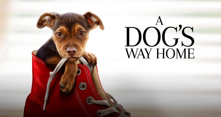 A Dog's Way Home – Advance Screening